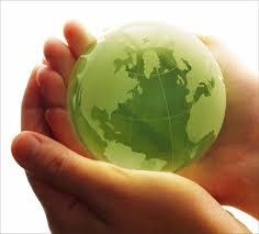 Responsabilidade Ambiental – Ação Civil Pública e TAC, Autuações Administrativas e Ações Penais